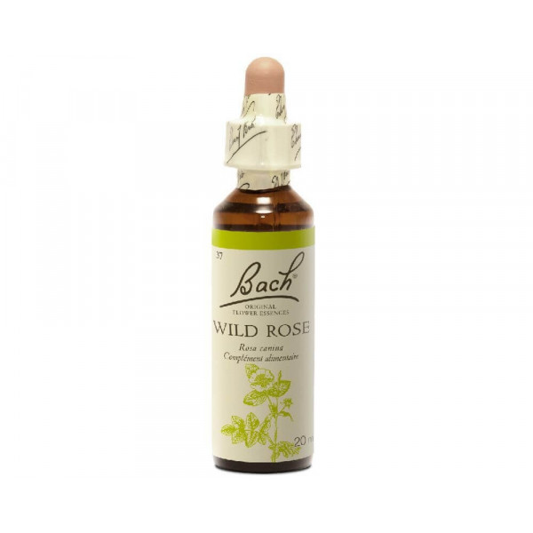 Wild Rose 20 ml - N° 37 Bach original