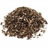 Echinacée - Echinacea angustifolia - Racine coupée Bio