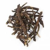 Osha Root +/- 36 gr - Sage Spirit
