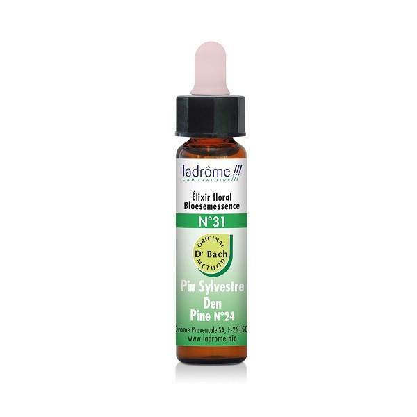 Pine 10 ml - N° 24 Fleur de Bach - Ladrôme