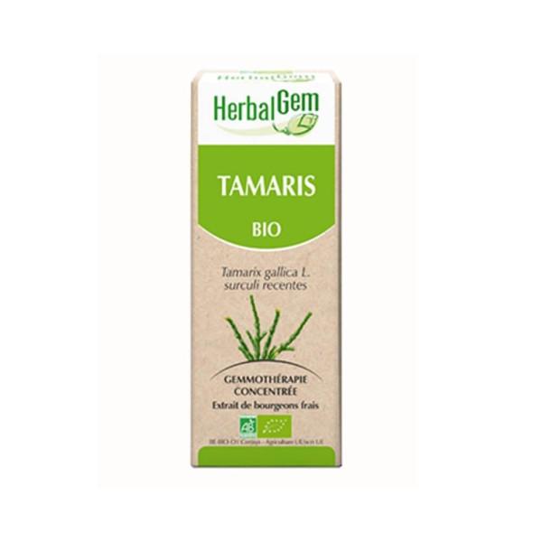 Tamaris bourgeon Bio -Tamarix gallica Macérat - 50 ml - Herbalgem