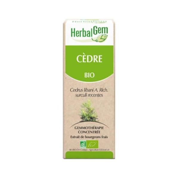 Cèdre du Liban bourgeon Bio -  Cedrus libani Macérat - 50 ml - Herbalgem