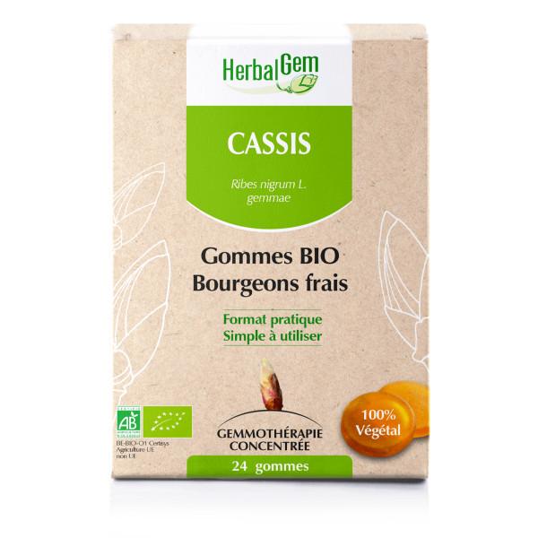 Gommes de macérats-mères Cassis  BIO - 24 gommes - Herbalgem