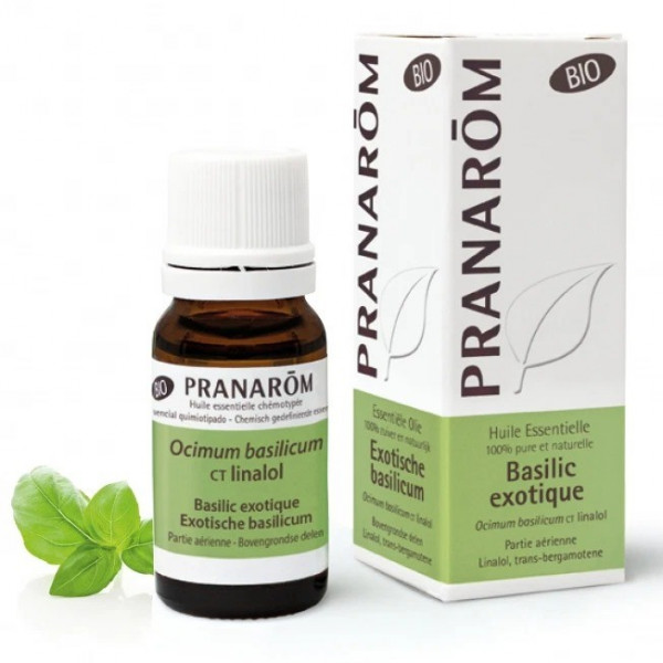 Huile Essentielle - Basilic exotique 10ml BIO - Pranarôm