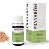 Encens (Boswellia carterii) 5 ml - Pranarôm