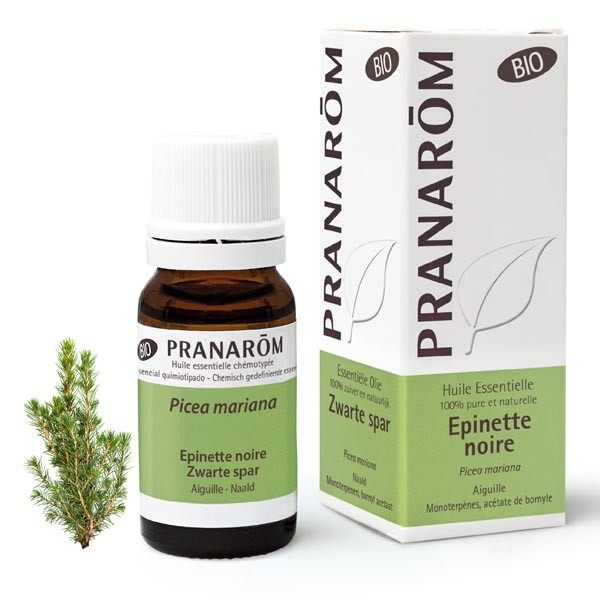 Huile Essentielle - Epinette noire 10 ml BIO - Pranarôm