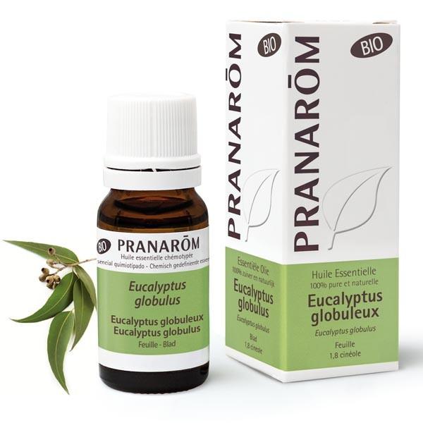 Huile Essentielle - Eucalyptus globuleux  Bio 10 ml - Pranarôm