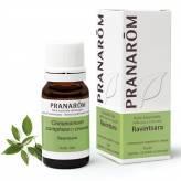 Huile Essentielle - Ravintsara (fe) ct cinéole 10 ml - Pranarôm