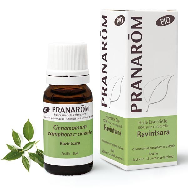 Huile Essentielle - Ravintsara (fe) ct cinéole 10 ml BIO - Pranarôm