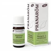 Huile Essentielle - Romarin à verbénone 5 ml BIO - Pranarôm