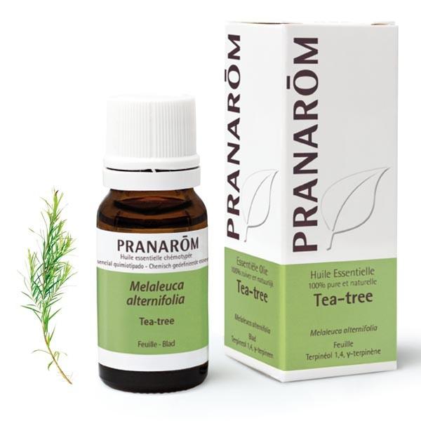 Huile Essentielle - Tea-tree 10ml - Pranarôm