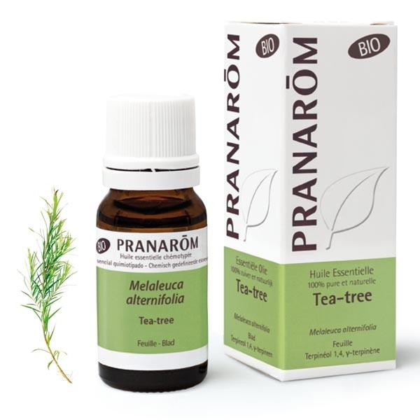 Huile Essentielle - Tea-tree 10ml BIO - Pranarôm