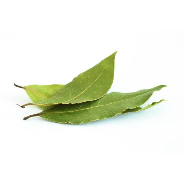 Laurier - Poudre Bio Herboristerie du Valmont
