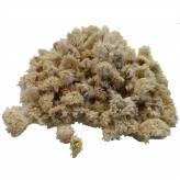 Camomille romaine - Fleur - 50 gr