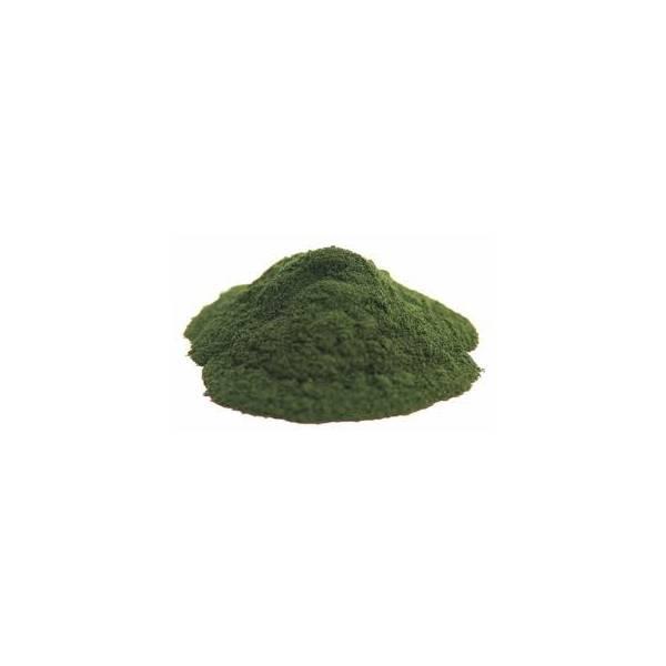 Chlorella - Poudre 50 gr