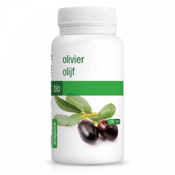 Olivier Bio 120 gélules - Purasana