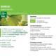 Teinture-mère Ginkgo biloba Bio - 100 ml - Ladrôme