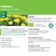 Teinture-mère Pissenlit Bio Taraxacum officinale 50 ml - Ladrôme