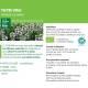 Teinture-mère Thym Bio - Thymus vulgaris 50 ml - Ladrôme