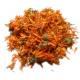 Souci - Calendula officinalis - Fleur Bio