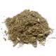 Absinthe -  Artemisia absinthium - Plante coupée Bio