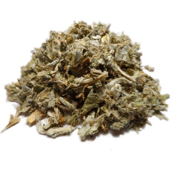 Artichaut - Cynara cardunculus - Feuille extra verte coupée Bio