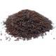 Psyllium Noir - Psyllium afra - Graine Bio