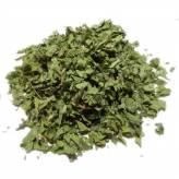 Alchemilla - Bio cut plant - 100gr