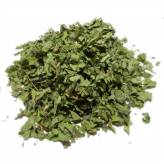 Alchemilla - Cut plant Bio Herbalism of Valmont