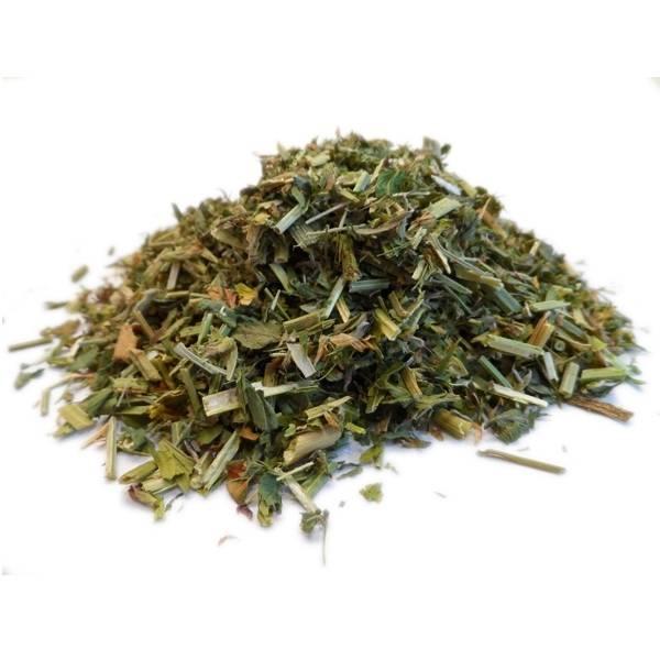 Alfalfa - Plante coupée Bio - 100 gr
