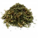 Ortie - Plante coupée - 100 gr