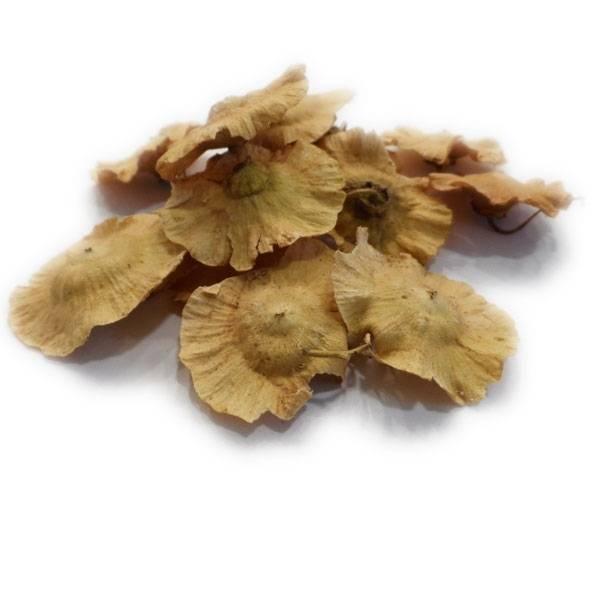 Paliure - Fruit entier - 100 gr