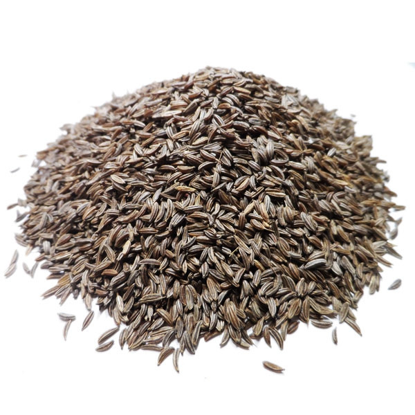 Carvi - Semences Bio - 100 gr