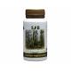 Charbon végétal super activé nature 120 gélules - SFB