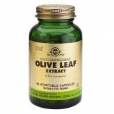 Olivier Extrait (Olive Leaf Extract) 60 gélules végétales - Solgar