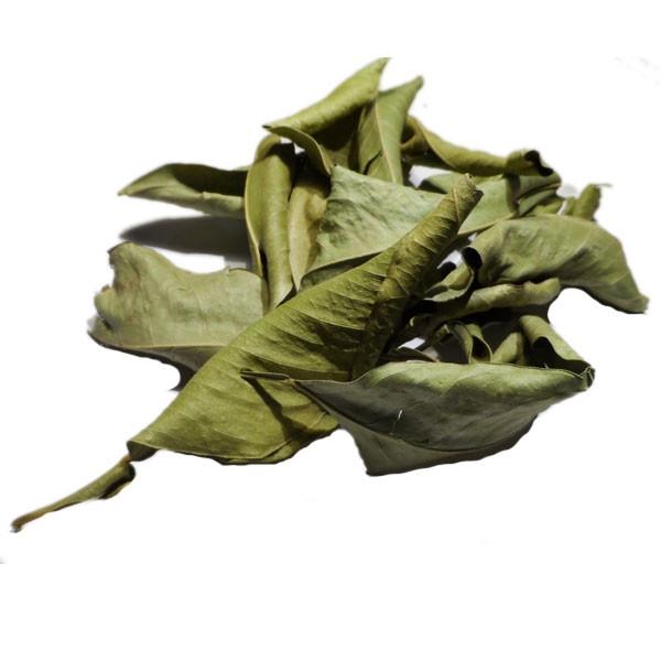 Oranger bigaradier feuille enti re tri e 100 gr herboristerie du vlamont - Oranger du mexique feuilles jaunes ...