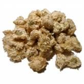 Roman Chamomile - flower - 50 gr