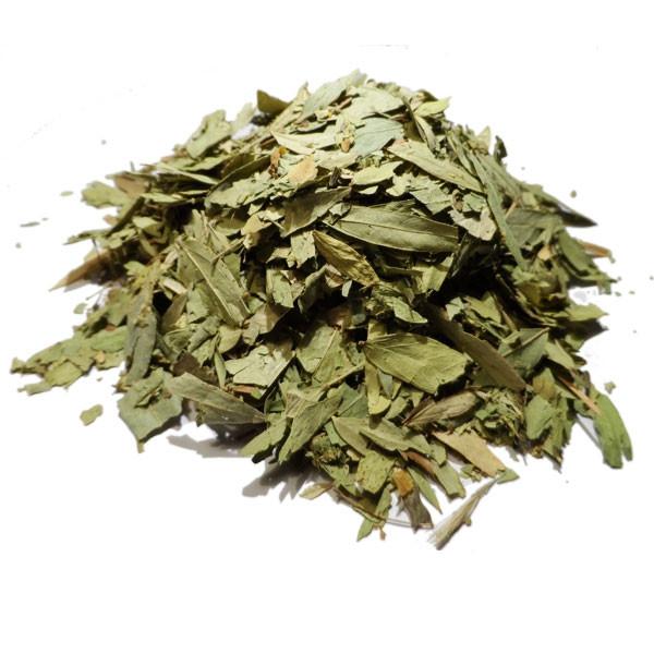 Tisane de Séné Tinnevelly Bio - Cassia angustifolia