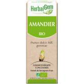 Amandier bourgeon 50 ml BIO - Herbalgem