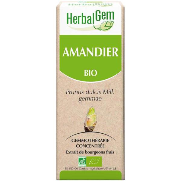 Amandier bourgeon 50 ml BIO - Herbalgem