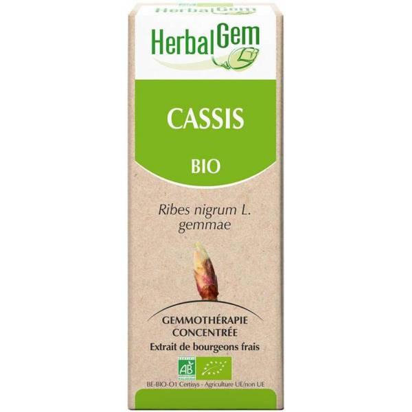 Cassis bourgeon 50 ml Bio - Herbalgem