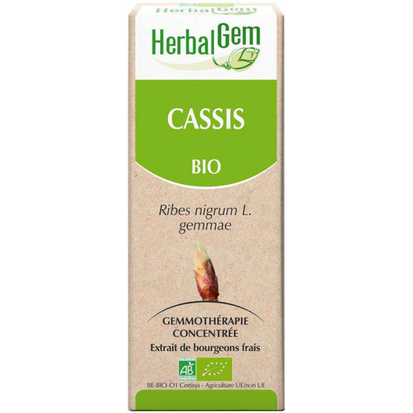 Cassis bourgeon 50 ml Bio - Herbalgem
