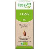 Cassis bourgeon 15 ml Bio - Herbalgem