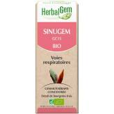 Sinugem 50 ml Bio - Herbalgem - GC15