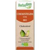 Cholestégem 50 ml Bio - Herbalgem - GC06