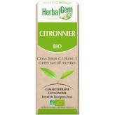 Citronnier bourgeon 50 ml Bio - Herbalgem