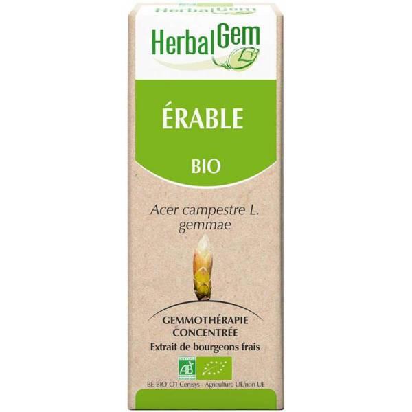 Érable bourgeon 50 ml BIO - Herbalgem