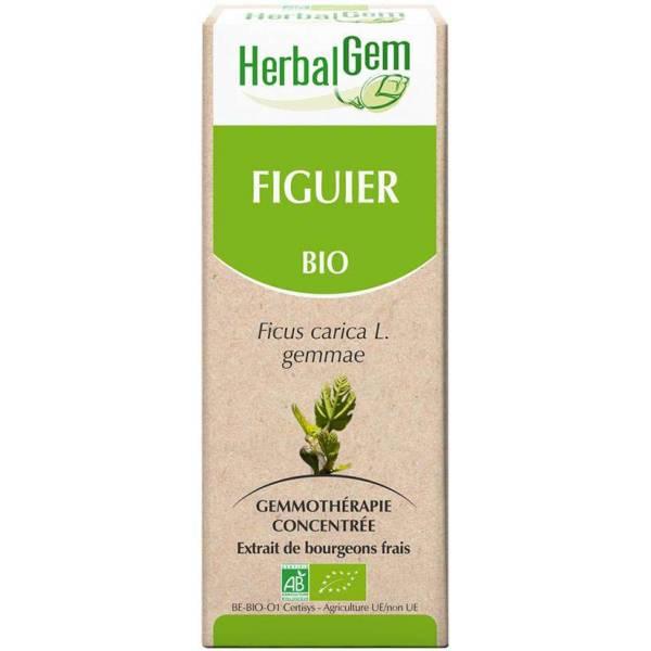 Figuier bourgeon 15 ml Bio - Herbalgem