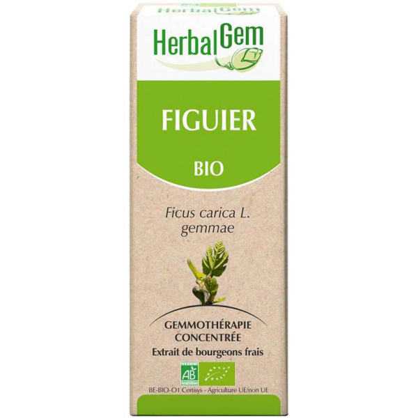 Figuier bourgeon 15 ml Bio - Herbalgem