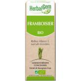 Framboisier bourgeon 15 ml Bio - Herbalgem